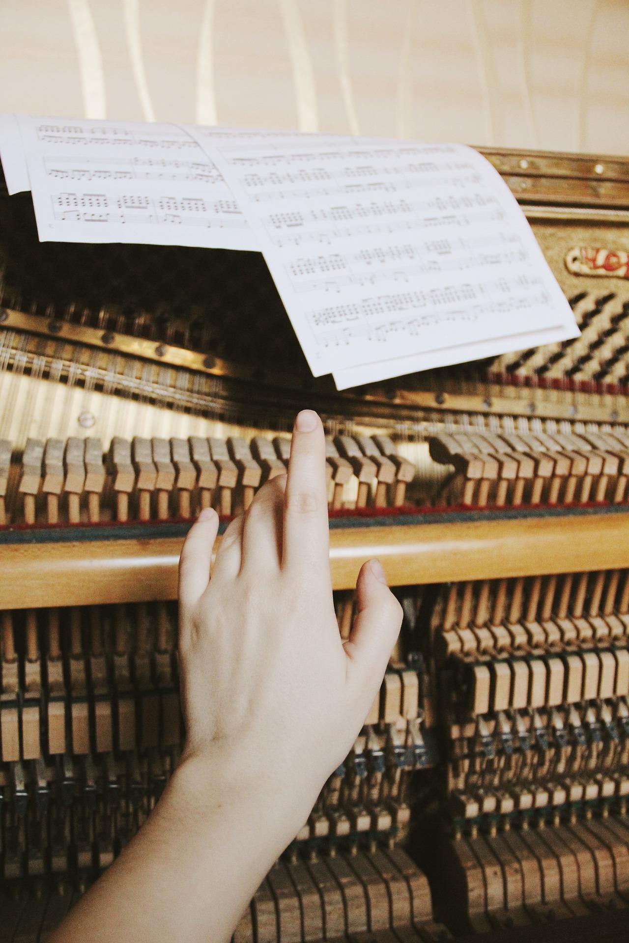 harpiste-cours