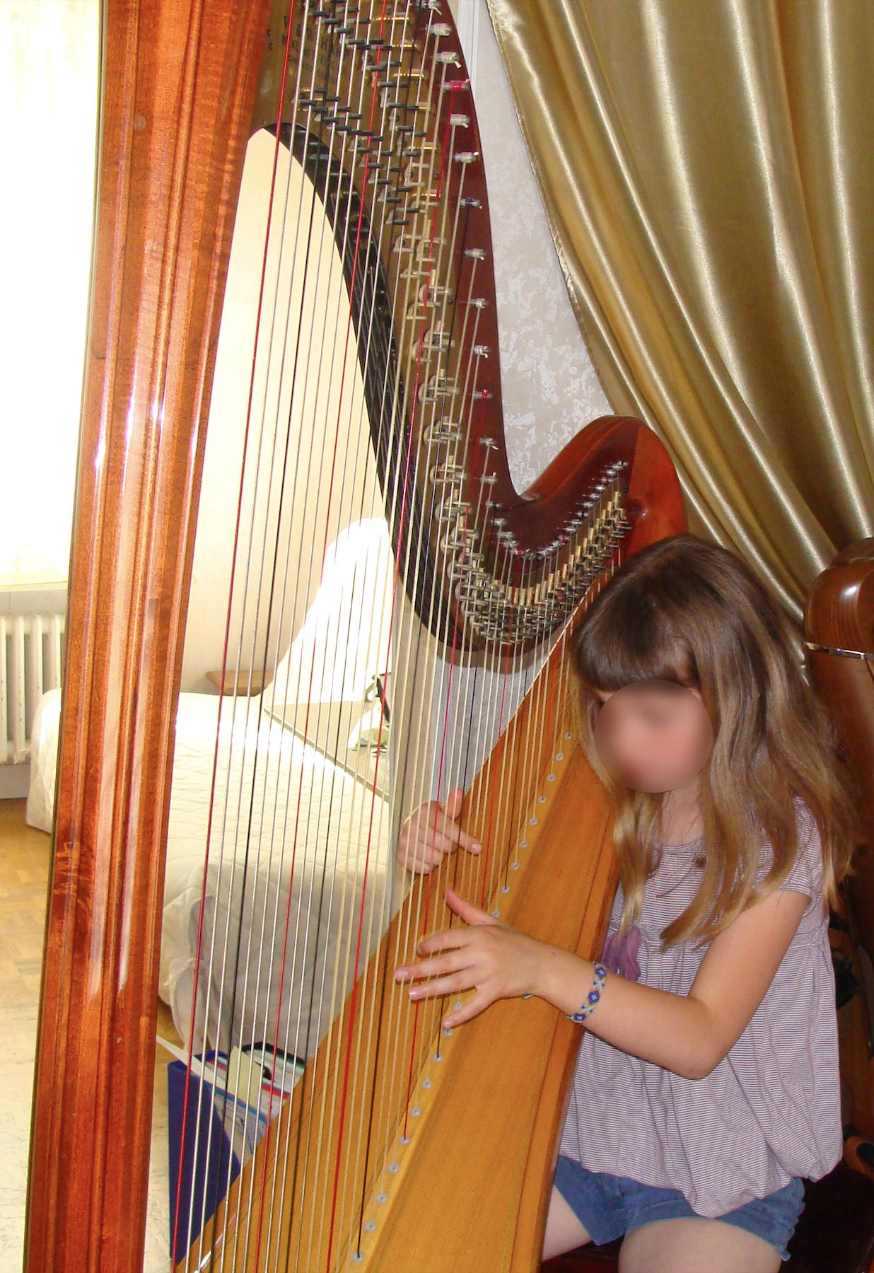 cours-harpe-domicile